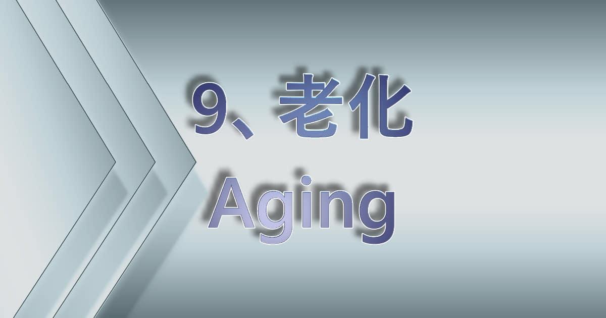 老化(Aging)