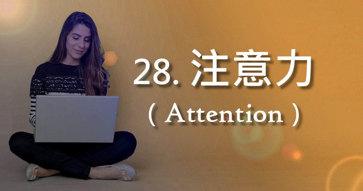 注意力(Attention)