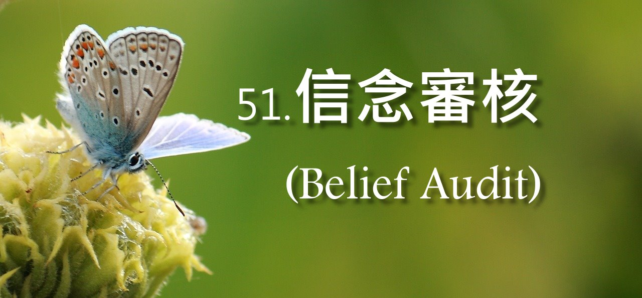 信念審核(Belief Audit)