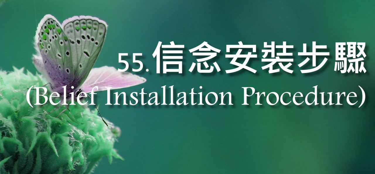 信念安裝步驟(Belief Installation Procedure)