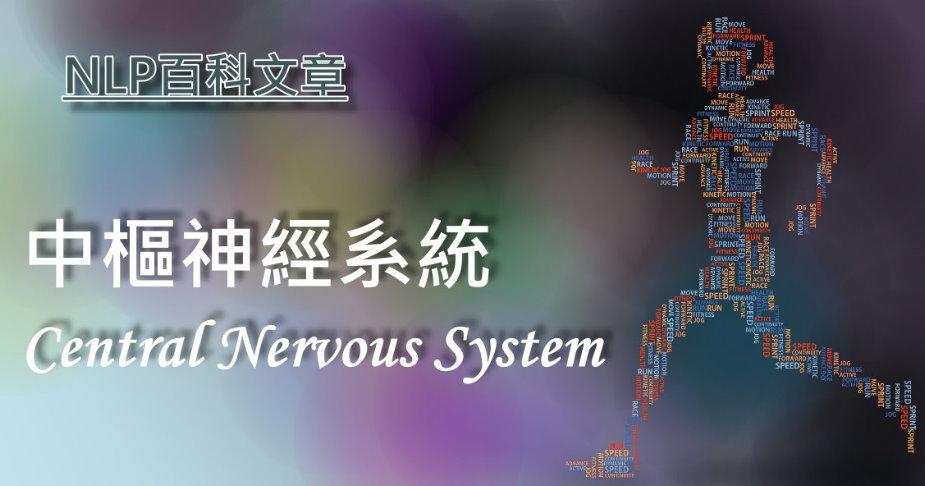 69.中樞神經系統(Central Nervous System)