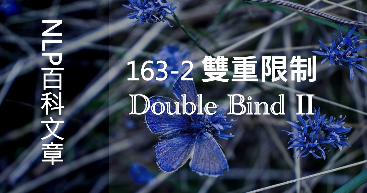 163-2 雙重限制(Double Bind)